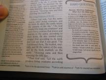 Holman woman's hcsb study bible 045