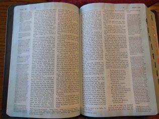 Holman woman's hcsb study bible 047