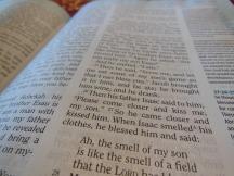 Holman woman's hcsb study bible 049
