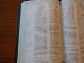 Holman woman's hcsb study bible 050