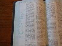 Holman woman's hcsb study bible 050