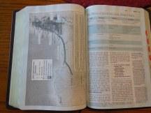 Holman woman's hcsb study bible 053