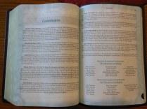 Holman woman's hcsb study bible 059