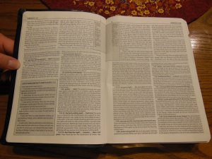 Matthew Henry kjv study Bible 032