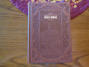 nasb picture bible 006