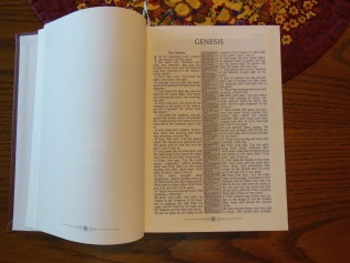 nasb picture bible 026