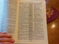 nasb picture bible 031