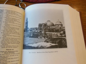 nasb picture bible 033