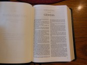 tbs windsor text Bible 029