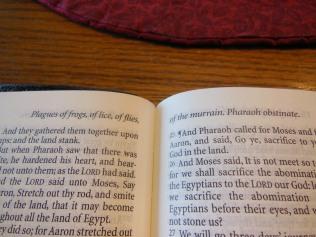 tbs windsor text Bible 035