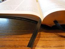 tbs windsor text Bible 054