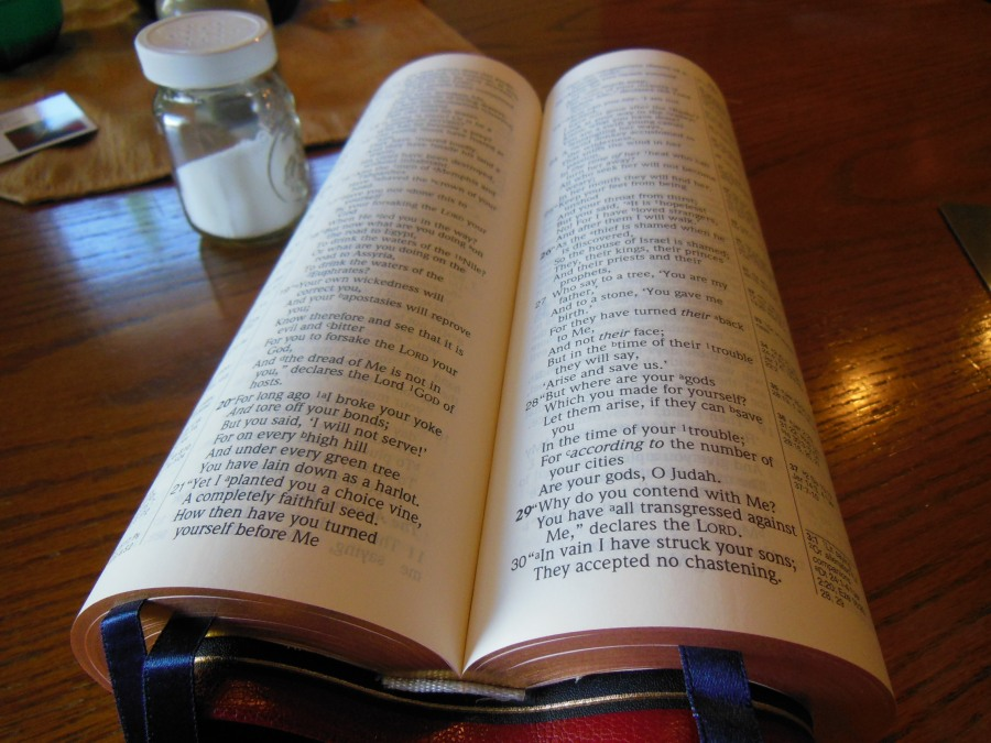 The Best Bibles in the World! Yes, Premium Bibles are Still Being